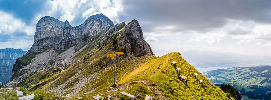 Urlaub im Berner Oberland